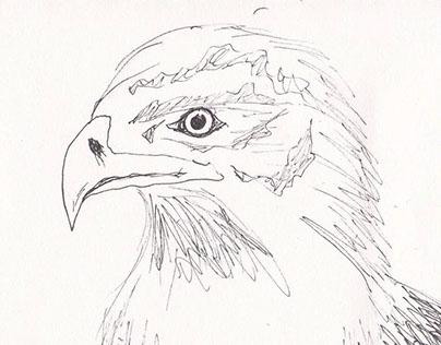 The Eagle - Flip Book