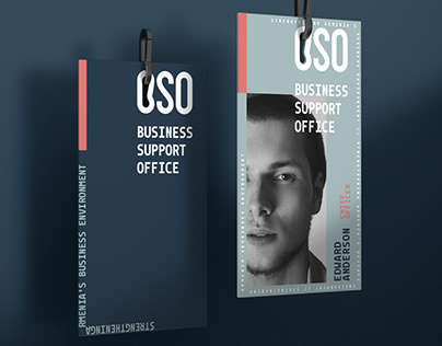 BSO (Business Support Office)