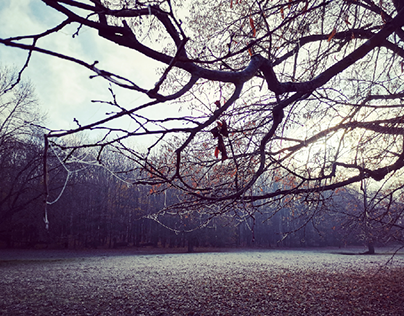 Freezy Autumn