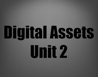 Digital Assets Unit 2