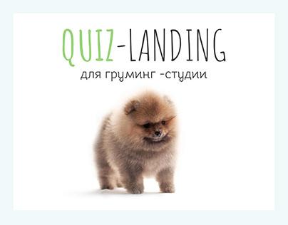Quiz Landing для груминг студии