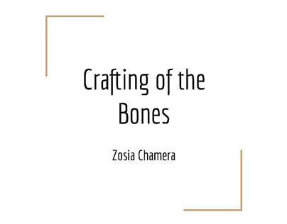 Interactive Elements of Skeletal Explorations