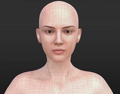 3D Model Upper Body