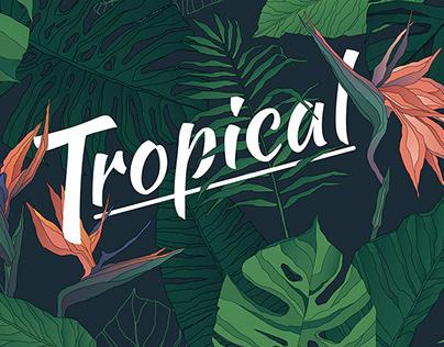 Tropical: Elements & Patterns By:Aleksandra Popova