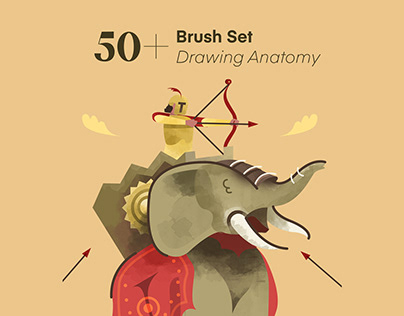Brush Procreate Drawing Anatomy