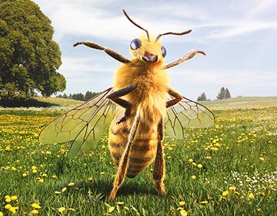 ÖBB Bees
