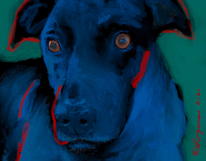 Charlie the Good Dog
