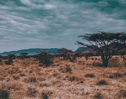 Samburu Travels