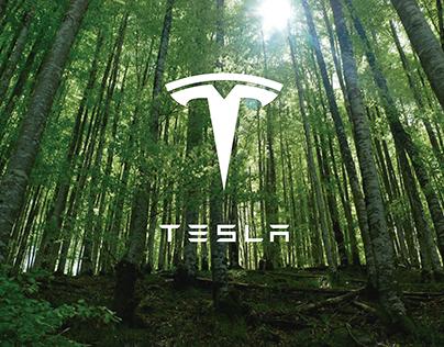 Tesla- 100% Eco-Friendly