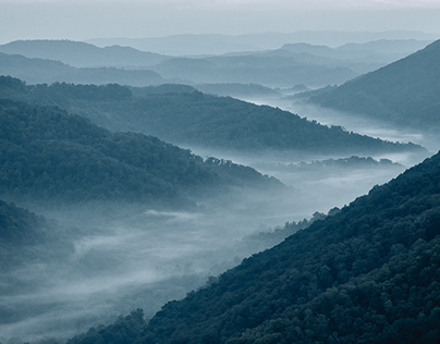 Nature Conservancy | Cumberland Purchase