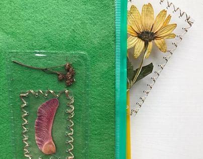 """Mini book """"Herbarium """""""