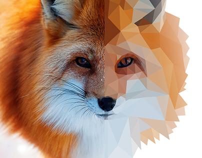Animals Geometrics