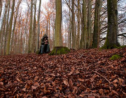 Wald und Menschen