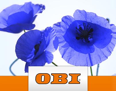 """OBI """"Frühling 2015"""""""