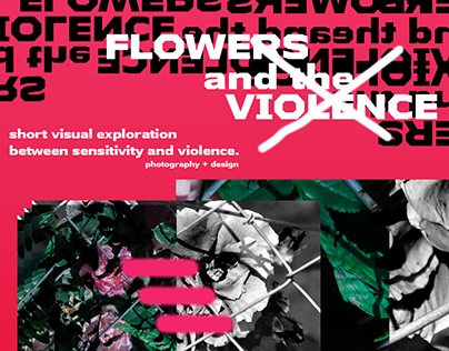 Flowers and the violence / 2017