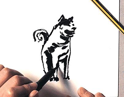 Voeux 2018 - illustration animation