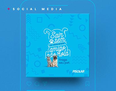 Social Media | Collection