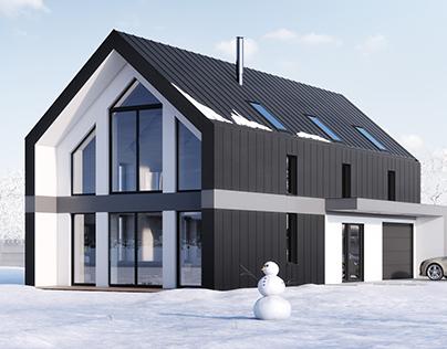 Single family house + interior