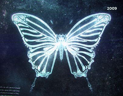 X-ray Butterfly