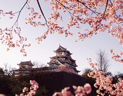 CGI - JAPAN