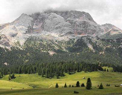A Walk at Plätzwiese | Dolomites