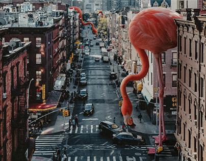 Mega Flamingo