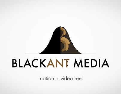 Black Ant Media | 2016 Motion + Video Reel