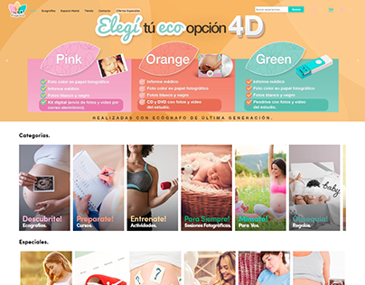 ECO IMAGINARTE | DISEÑO WEB WORDPRESS