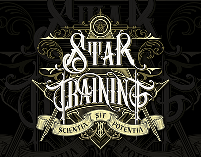 Star Trainig Logo