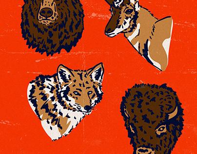 Yellowstone Fauna Illustration