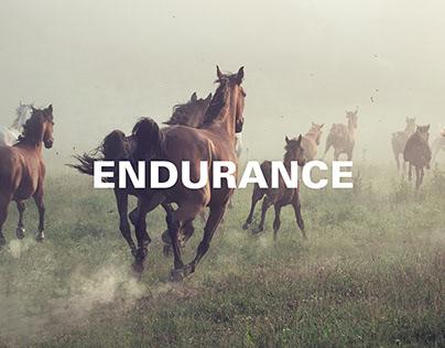 Tabiat Endurance / Visual Identity