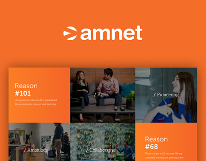 Redesign - Amnet
