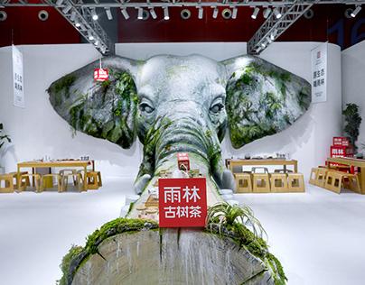 """把原始雨林""""搬进""""茶空间——2019茶立方升级:雨林古树茶·生态茶空间"""