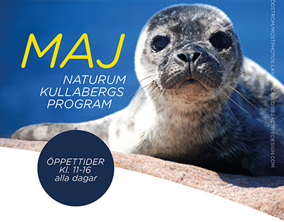 Naturum Newsletters