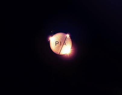 Idioms campaign - PIA