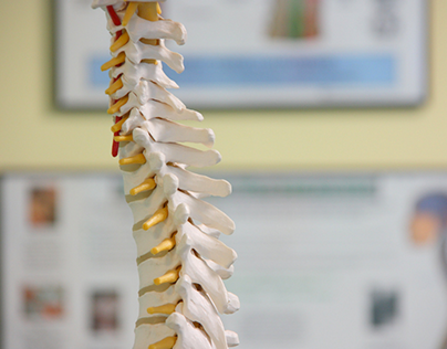 Strong spine
