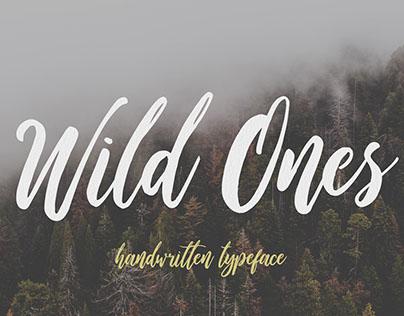 Wild Ones Script - FREE FONT