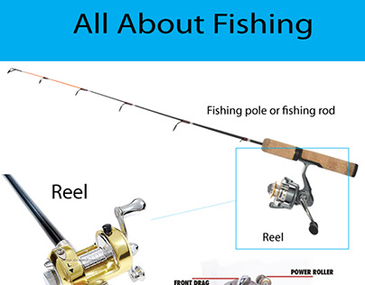 Infographic - Fishing Tips