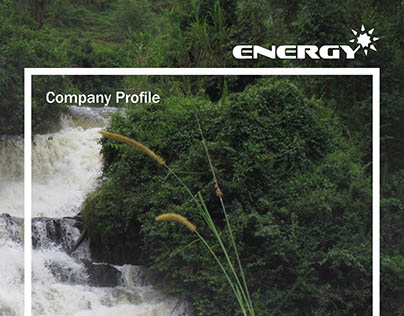 Company Profile - Energy Services Limited