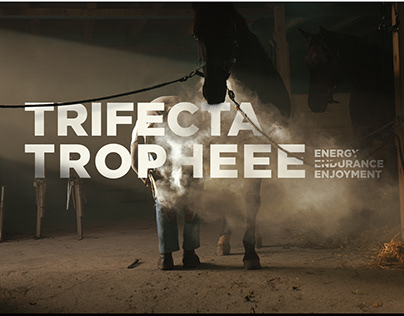 Trifecta Tropheee - Food Supplement for Horses