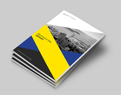 Mechanics Bay Report