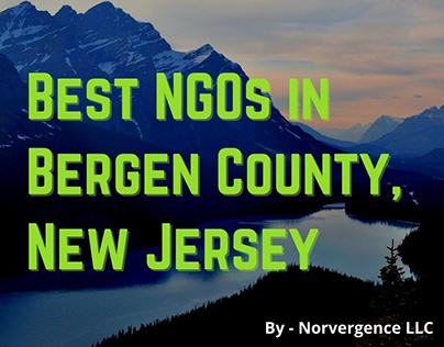 NGOs in Bergen County, New Jersey