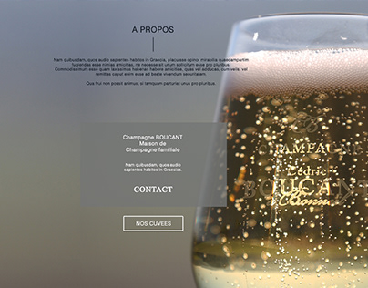 Website for Champagne House