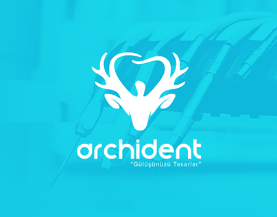 Archident Web & Logo Design
