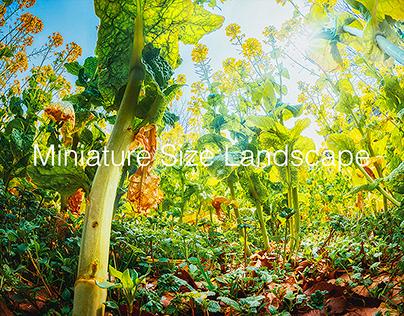 Miniature Size Landscape -season2-