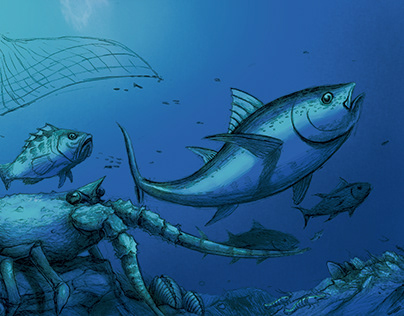Pesca Baja California
