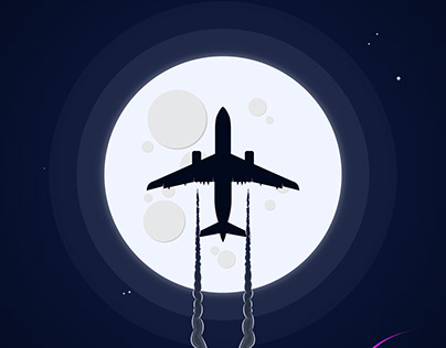 Flight Modes