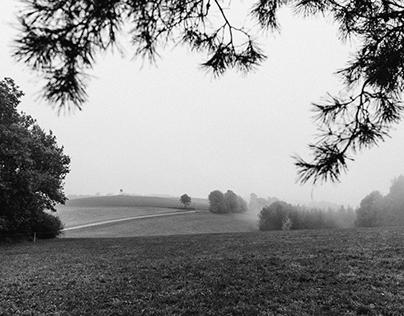 autumn morning | 10.2016