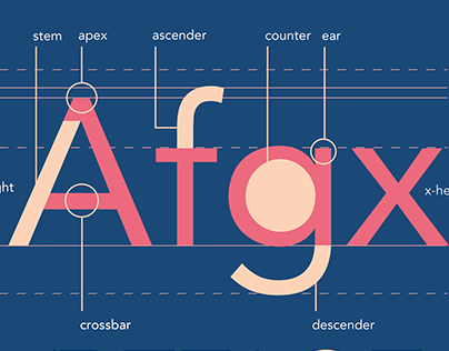 Typeface Anatomy of Avenir