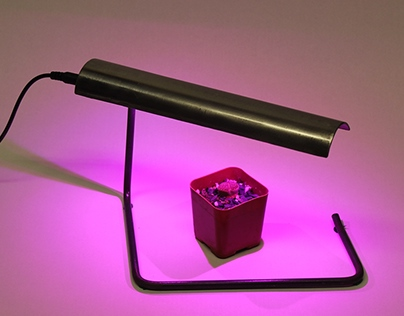 Desk Top Grow Light